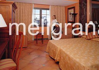 HotelMeliá Sol y Nieve
