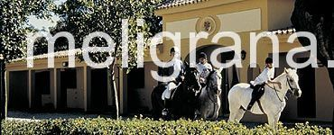 HotelThe San Roque Club