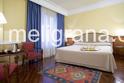 HotelNH Gran Hotel
