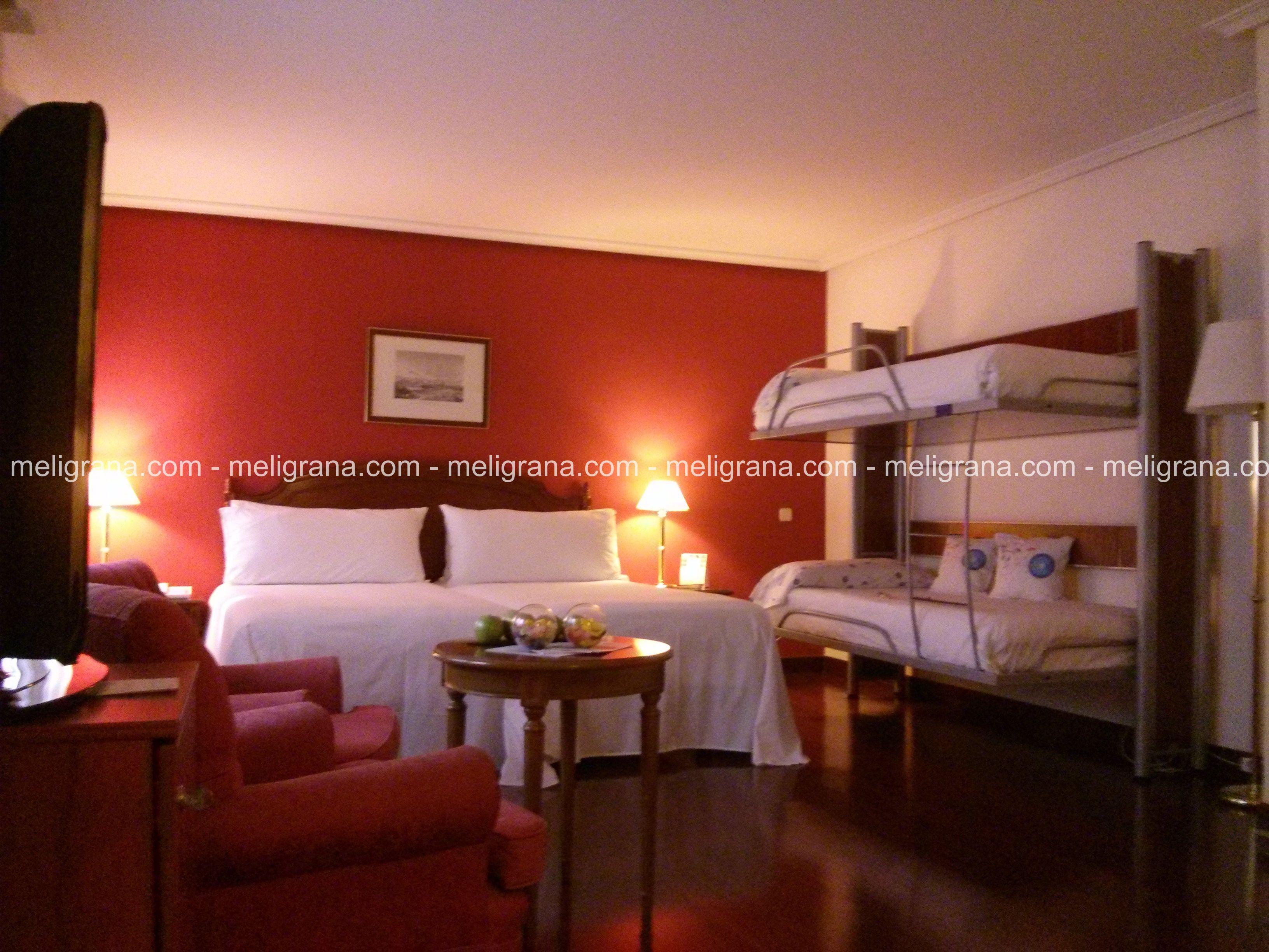 HotelTryp Ambassador